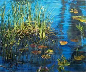 """Wetlands/Beaver Lake"""