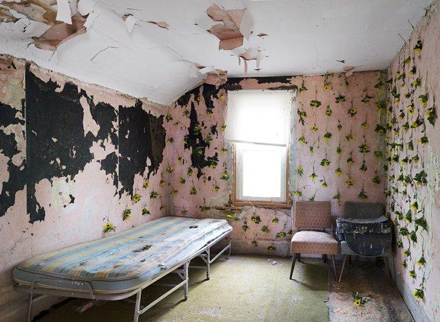 "Emily Neufeld, ""Prairie Invasions: A Lullaby,""2019"