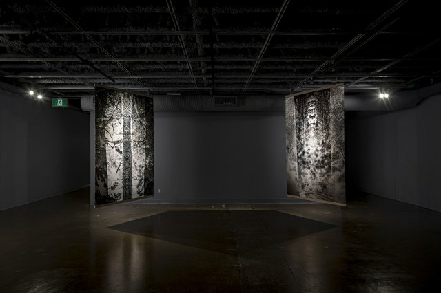 "Dwayne Martineau, ""One Dead Tree #2"" (left), 2012, and ""Propagation,"" 2020, backlit film print, 80"" x 53.5"" each (photo by Dwayne Martineau)"