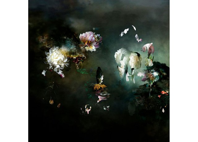 """The Bau-Xi Gallery is highlighting work by Belgian photographer Isabelle Menin, whose lightjet prints, including """"The Black Garden,"""" pictured here, have a deceptively painterly ethos."""