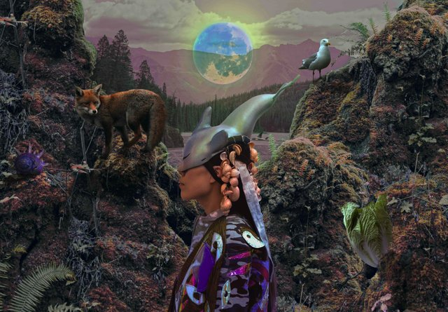 """Zadie Xa and Benito Mayor Vallejo, """"Moon Poetics 4 Courageous Earth Critters and Dangerous Day Dreamers,"""" 2020"""