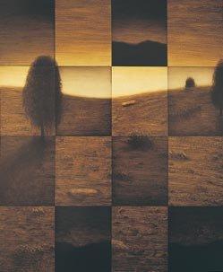 """""""Fragmented landscapes (left)"""""""