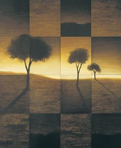 """""""Fragmented landscapes (right)"""""""