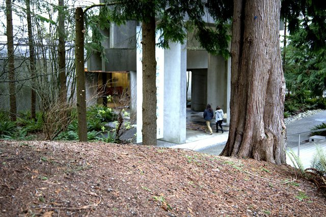 The Museum of Anthropology at theUniversity of British Columbia inVancouver, designed by Canadian architect Arthur Erickson, with grounds landscaped by Cornelia Hahn Oberlander, was completed in 1976. (photo by John Thomson)