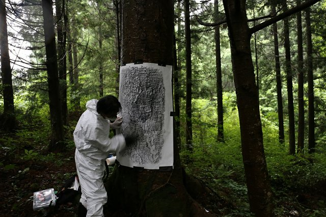 Masao Okabe makes a frottage of an irradiated tree in Ōkuma Town, Fukushima Prefecture, in 2015. (photo by Chihiro Minato)