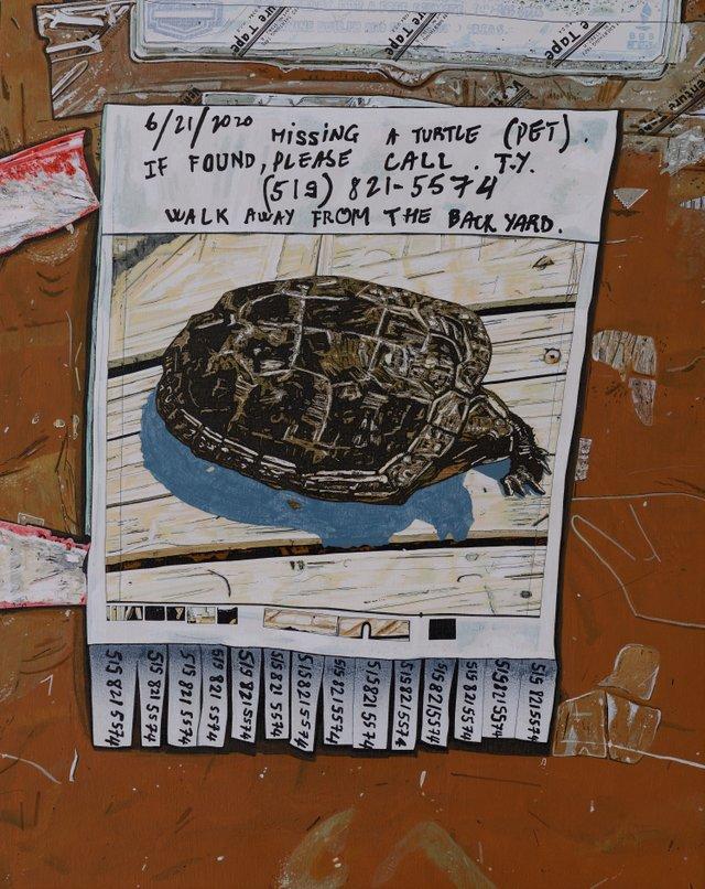 "Andrew James McKay, ""A Turtle (Pet),""  2020"