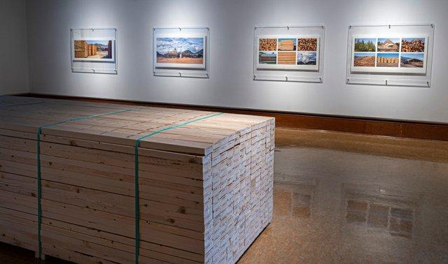 "Fern Helfand, ""Timber, Lumber, Wood, Home,"" 2021"