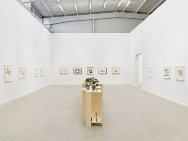 Charmian Johnson, installation view at Catriona Jeffries, Vancouver