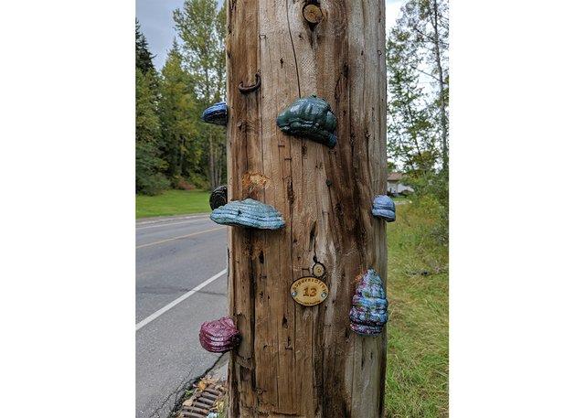 "Sebastian Nicholson's ""Spores of Joy"" were installed in Prince George, B.C. (courtesy the artist)"