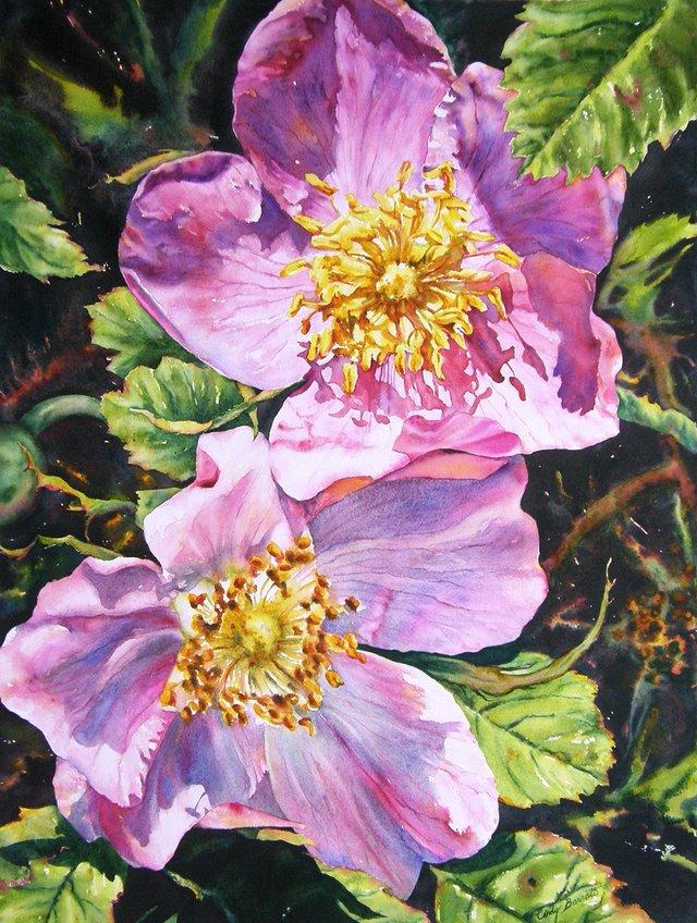 """Cindy Barratt, """"Sunny Alberta - Roses #12,"""" 2012"""