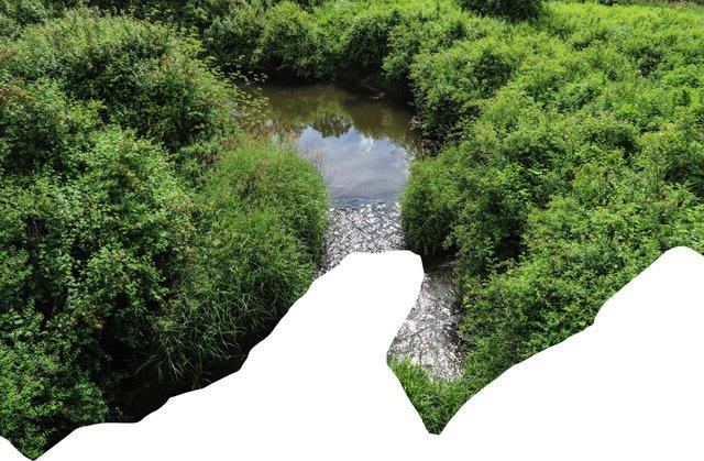 "Nanaimo Art Gallery, ""huli u'tu staluẃ / Riverbed,"" 2021"