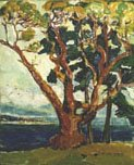 """Arbutus Tree (front)"""