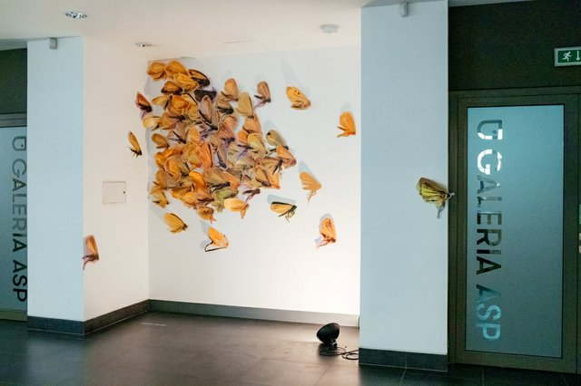 """Installation view of """"NEBULA"""" by Alexandra Haeseker, made of  UV ink on recycled plastic, in """"ProTO-type(s)"""" at the Art Gallery of the Academy of Fine Arts in Krakow"""