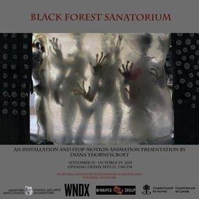 "Diana Thorneycroft, ""Black Forest Sanatorium,"" 2021"