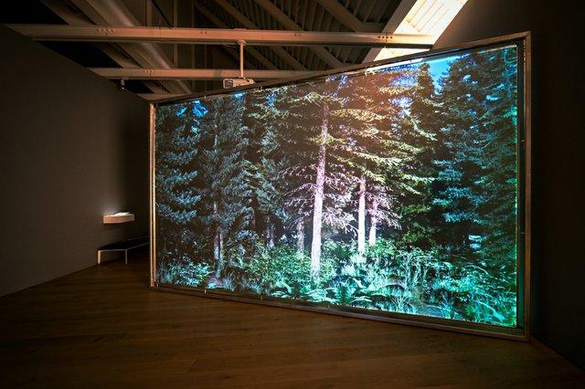 """Jordan Hill, """"Horizontal Vertigo,"""" 2020 (courtesy The Polygon; photo by Akeem Nermo)"""