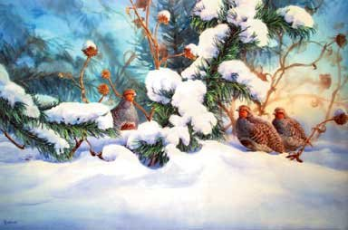 """Winter Shelter (Gray Partridges)"""