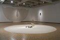 "Edward Poitras, installation view, ""Ground and Tree"","