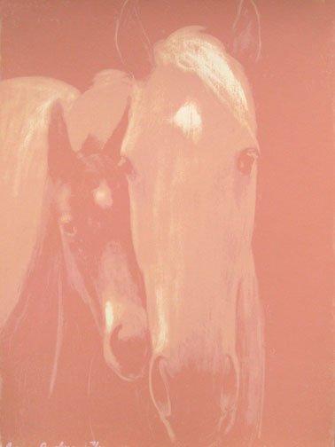 """Cherokee Village (pink)"""
