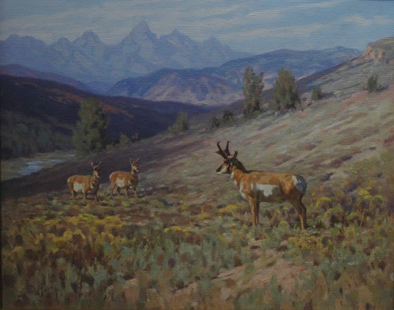 """Pronghorn above Red Hills Bottleneck"""