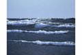 """Foaming Sea"""