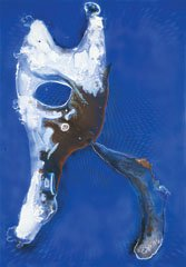 """Untitled (Blue Tooth)"""