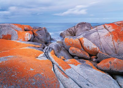 """""""Bay of Fires"""""""