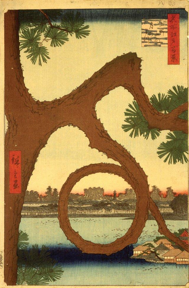 """The Moon Pine, Ueno Temple Precincts"""