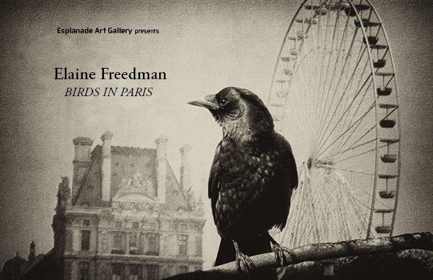 """American Crow- Ferris Wheel"""