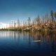 """Swimmer, Near Chute Lake"""