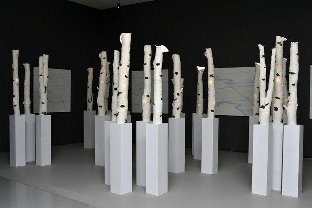 """KC Adams, """"Birch Bark Ltd."""", 2012"""