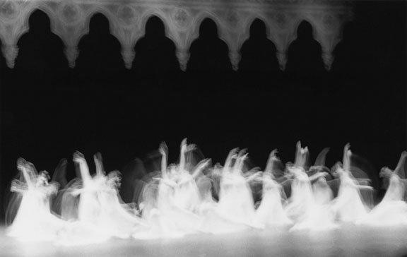 """""""Beauty in motion"""""""