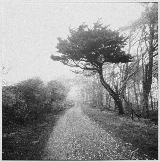 """Tintagel, Cornwall, U.K., Dec. 24, 1984"""