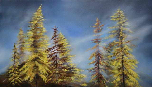 """Larch Trees"""