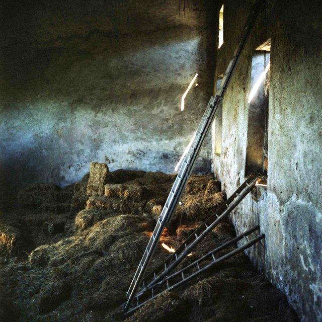 """""""La Porte: Barn Ladders"""""""