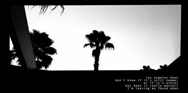 """Los Angeles Dawn"""