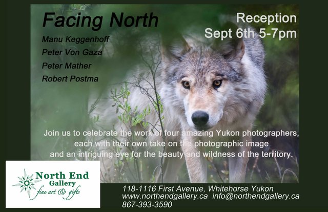 """""""Facing North"""" photography show poster"""