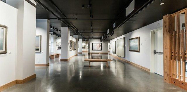 """Bateman displays wildlife art in his new Victoria gallery"""