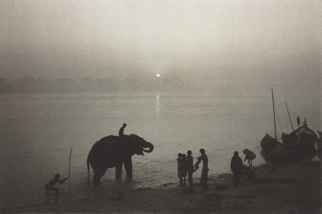 """""""Along the Ganges during the Sonepur Mela festival"""""""