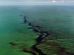 """Oil Spill #10, Oil Slick, Gulf of Mexico, June 24"""