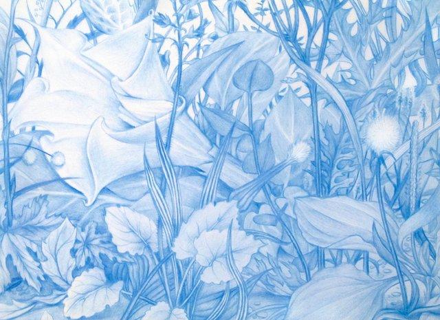 """Zachari Logan """"Garden 1, from Specimen Series (detail), 2013"""""""