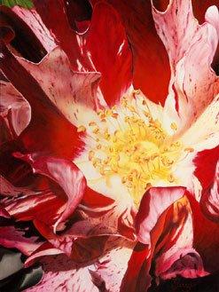 """Spring Radiance"""