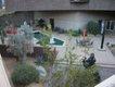 Palm Springs Art Museum Sculpture Garden