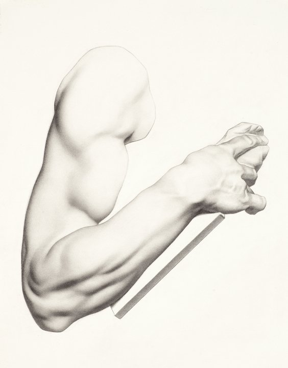 """Bargue Pencil Drawing by Chanel Cha """"Bargue Arm"""""""
