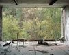 """View of Forest, Dental Hospital, Pripyat"""