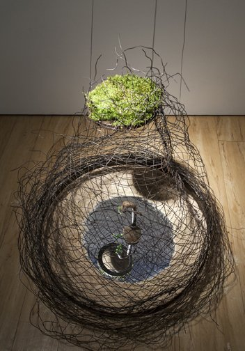 """Sherri Chaba, """"Treehouse"""", 2014"""