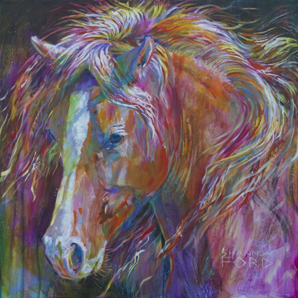 """Shannon Ford """"Share all of Your Colours"""""""