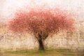 """Tree and Surroundings"""