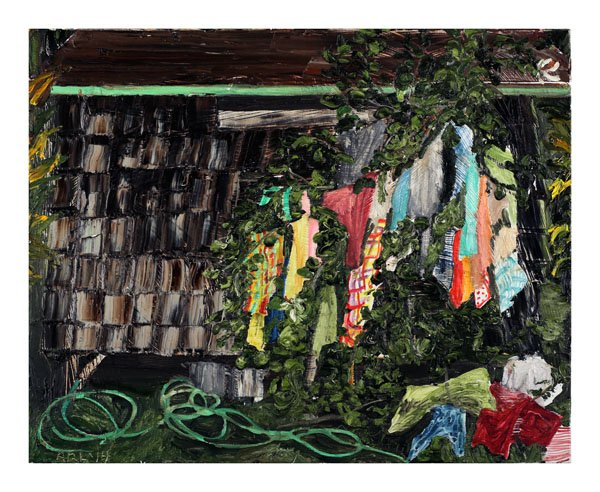 """Coloured Laundry on Hibiscus Tree"""