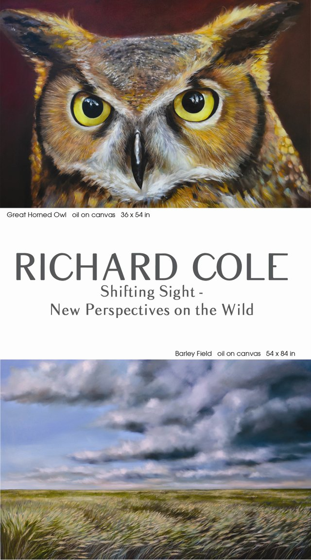 Richard Cole poster