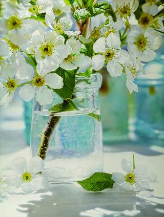 """Glen Semple, """"Lovely Fruit Blossoms,"""" 2014"""